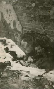 8. ul. Daniłowiczowska – barykada i okienko piwniczne, przez które wyciągano Edka Kuminka.